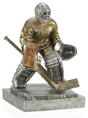 Image de Trophée Hockey